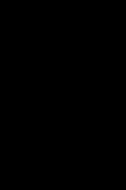 Light W Scarf In Black
